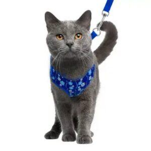 Шлейки/поводки для кошек
